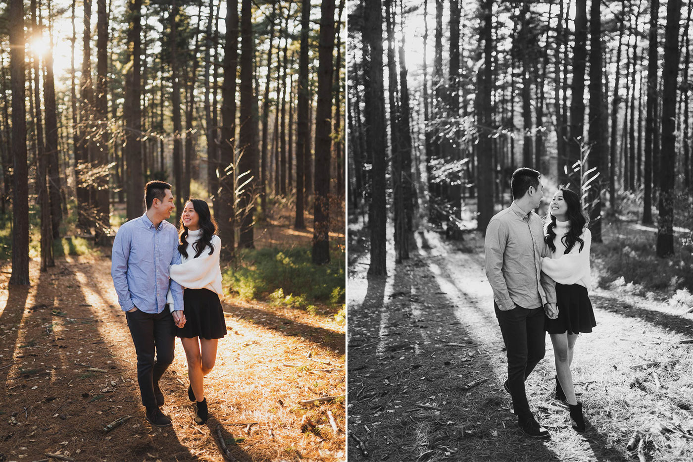 e-session photos at Prosser Pines in Long Island